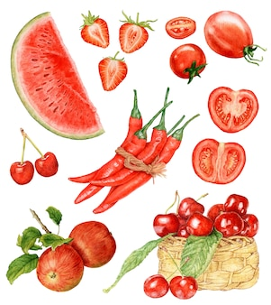 Watercolor red fruit and vegetables isolated.