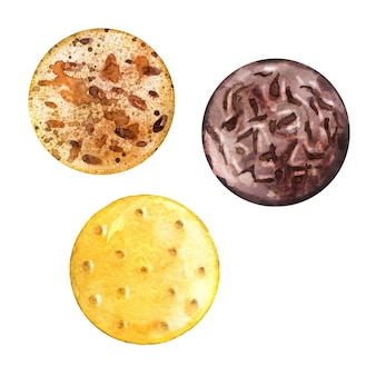 Watercolor round biscuits