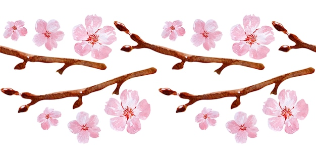 Watercolor seamless border drawing with branches and cherry blossoms
