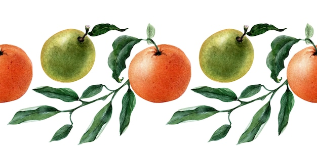 Watercolor seamless border of fruits, twigs and slices of tangerine