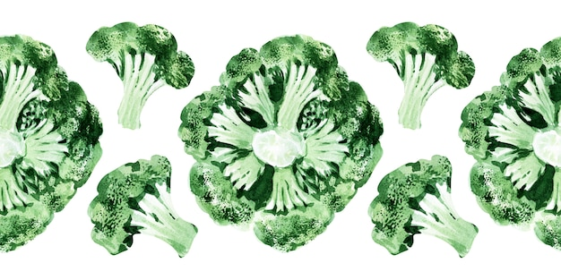 Watercolor seamless border with different types of cabbage. broccoli
