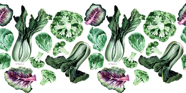 Watercolor seamless border with different types of cabbage. brussels sprouts, broccoli and kale