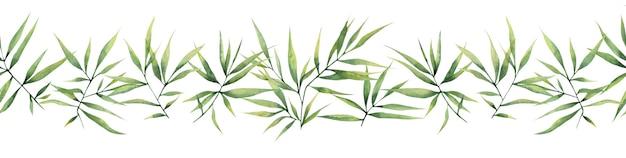 Акварель бесшовная граница с зелеными ветвями и листьями бамбука на белом фоне