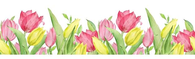 ピンクと黄色のチューリップと緑の葉の水彩画のシームレスなパターンの境界線。イースターの花のボーダーが分離されました