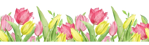Watercolor seamless pattern border of pink and yellow tulips and green leaves. easter floral border isolated