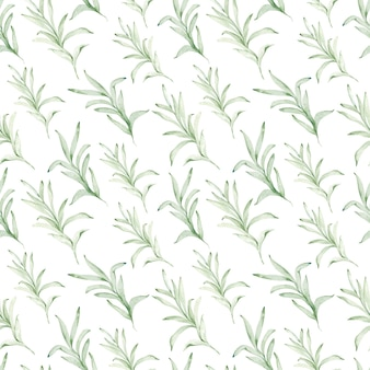 Watercolor seamless pattern of eucalyptus branches