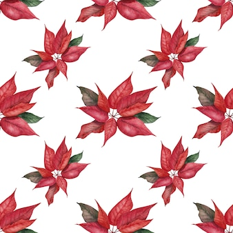 Watercolor seamless pattern festive composition with the image of bright poinsettias