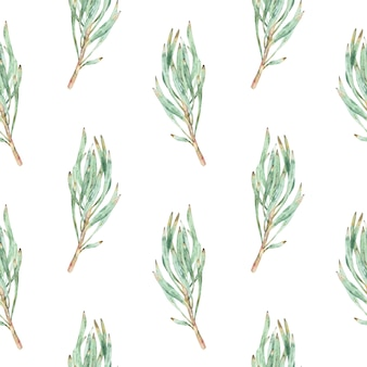 Watercolor seamless pattern of green protea leaves.
