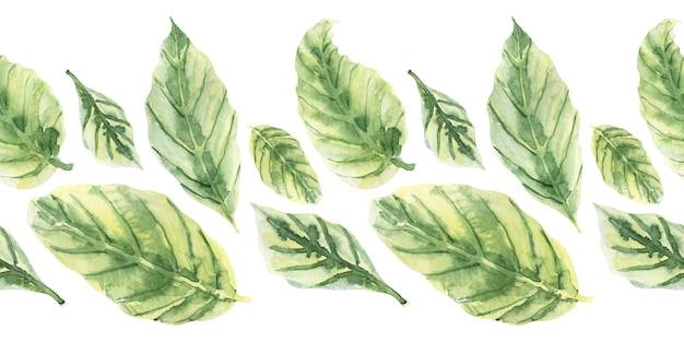 Акварельный фон из листьев