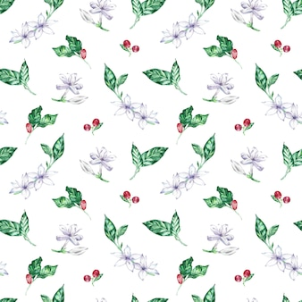 Watercolor seamless pattern with coffee flowers, berries and leaves.