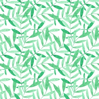Watercolor seamless pattern with green branches on white