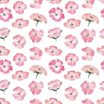 꽃이 핌, 꽃, 꽃 봉오리와 제라늄 식물의 잎 수채화 원활한 패턴