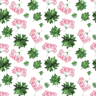 Watercolor seamless pattern with inflorescences, flowers, buds and leaves of the geranium plant