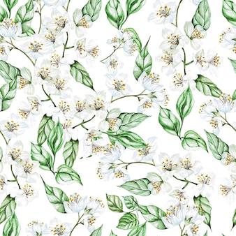 재 스민과 잎 수채화 완벽 한 패턴입니다. 삽화