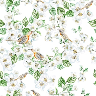 ジャスミンの花、鳥と水彩のシームレスなパターン。図