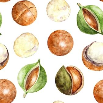 마카다미아 너트와 수채화 원활한 패턴