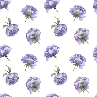 Watercolor seamless pattern with peony buds lilac peony flowers with leaves on a white background