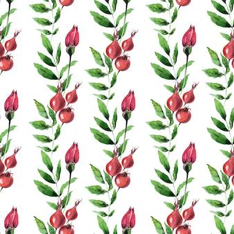 ローズヒップ植物と水彩のシームレスなパターン