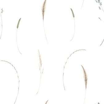 白い背景の乾燥したシンプルなフィールド草に分離された小穂と水彩のシームレスなパターン
