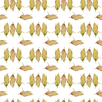 Watercolor seamless pattern with sweet corn cobs isolated on white background.