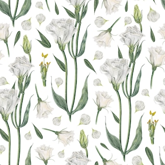 Watercolor seamless pattern with white eustoma