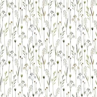 白い背景の上の野生のフィールドハーブ野草と水彩のシームレスなパターン