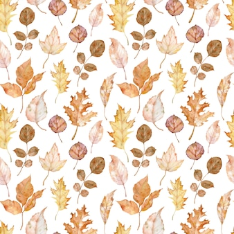 Watercolor seamlss pattern of autumn leaves isolated on the white background. botanical art. fall background. herbarium