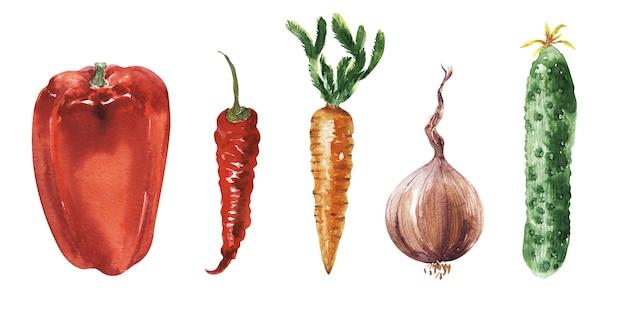 Акварельный набор иллюстраций на тему сада