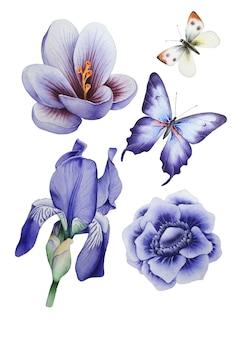 花と蝶をセットした水彩画。図。手で書いた。