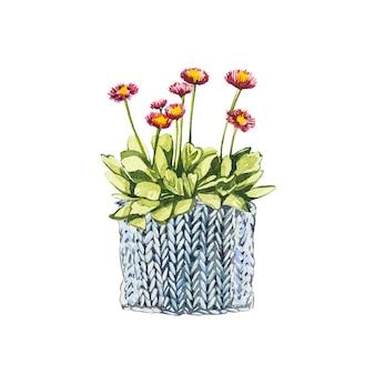 화분에 수채화 작은 핑크 꽃. 손은 흰색 바탕에 수채화 그림을 그립니다. 부활절 컬렉션.