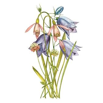 水彩スノードロップの花。白で隔離される野生の花セット。植物の水彩イラスト、スノードロップブーケ、素朴な花。