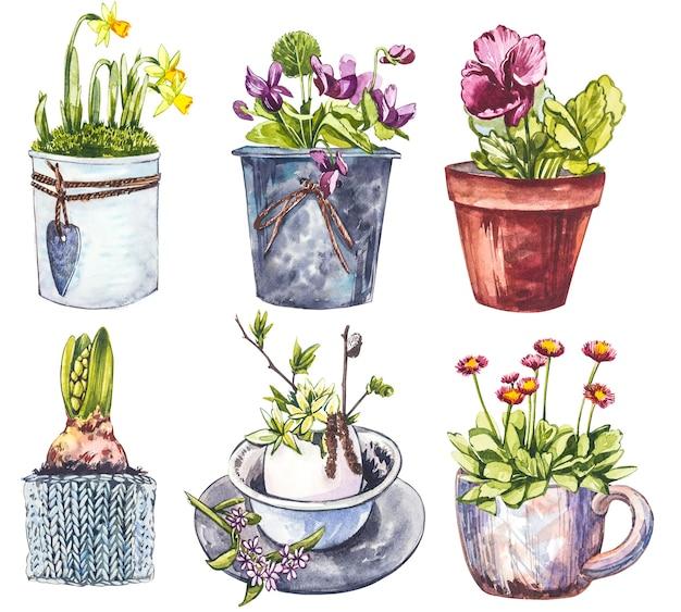 Акварельные весенние цветы в цветочном горшке