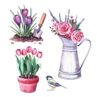 Watercolor spring flowers in the soil and shovel, arrangement in a vintage metal pitcher, tit bird. illustration for garden