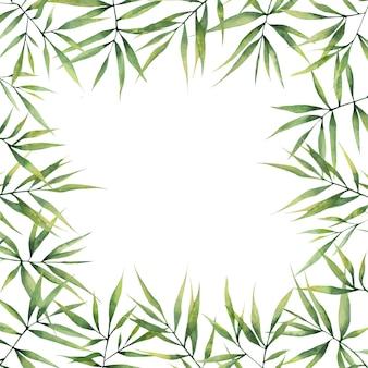 Акварель квадратная рамка с зелеными листьями бамбука на белом фоне