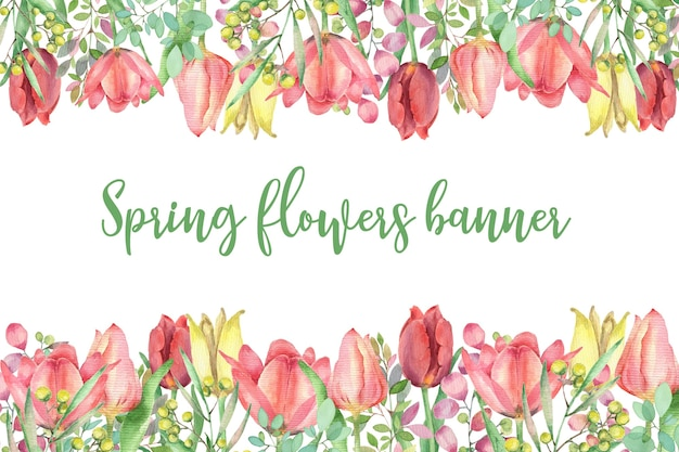 튤립과 미모사 분기 수채화 사각형 프레임입니다. 봄 꽃 템플릿