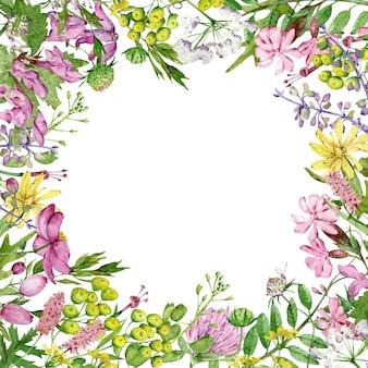 水彩の正方形の野の花のフレーム。
