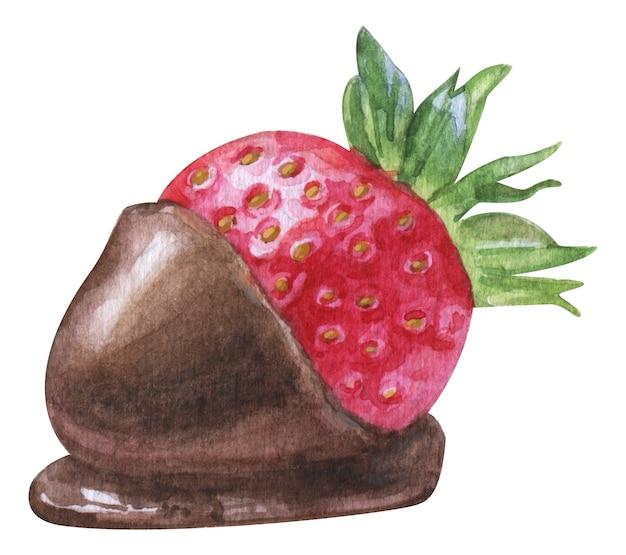 白い背景の上のチョコレートの水彩イチゴ