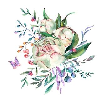 牡丹の水彩夏の花