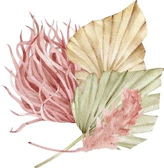 乾燥ファンのヤシの葉とススキと水彩の熱帯の配置。エキゾチックな花束。