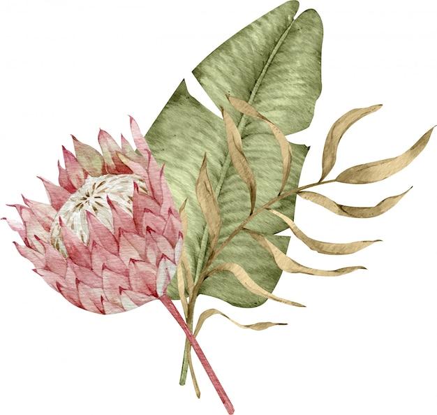 ヤシの葉とプロテアの花の水彩画のトロピカルブーケ。エキゾチックな乾燥葉のイラスト。