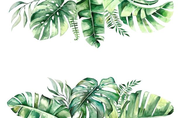 水彩の熱帯の葉の境界線