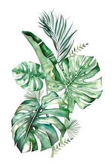 水彩の熱帯の葉の花束
