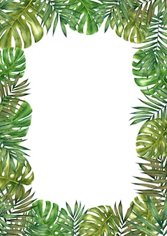 Watercolor tropical leaves frame. watercolor illustration on white.