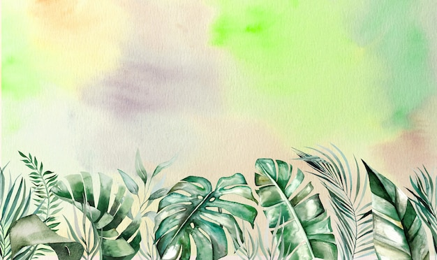 Watercolor tropical leaves seamles border with watercolor background
