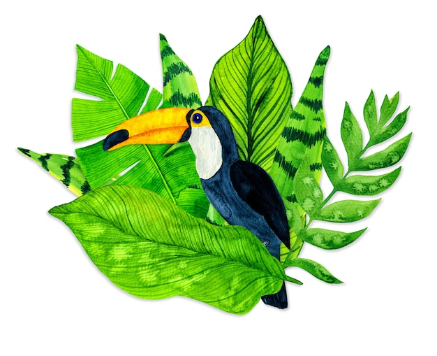 Watercolor tropical leaves and toucan on white background