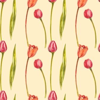 水彩チューリップのシームレスなパターン。白で隔離される野生の花セット。植物の水彩イラスト、オレンジチューリップの花束、素朴な花。 Premium写真