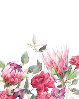 バラ、プロテアの花、ユーカリの葉と水彩のビンテージフレーム。手描き