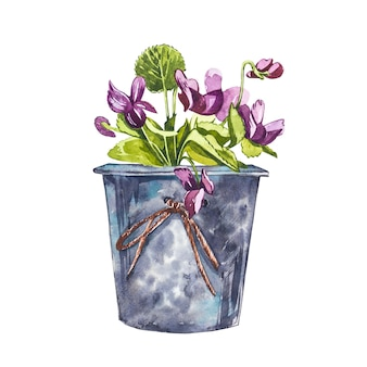 Watercolor violet flowers in flower pot. hand draw watercolor illustrations on white background. easter collection.