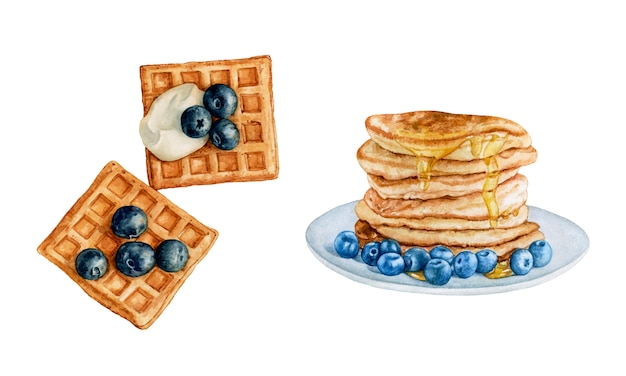 Watercolor waffles, pancakes with blueberries