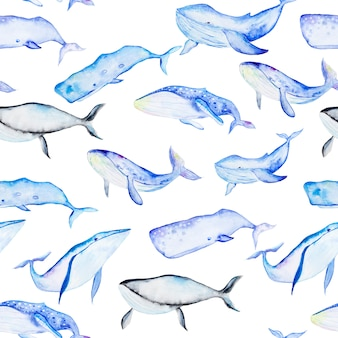 Watercolor whales seamless pattern